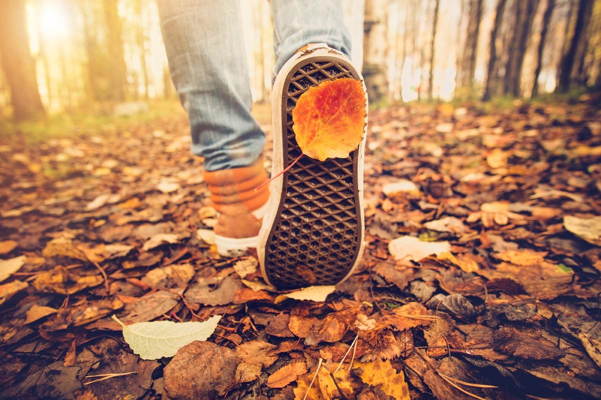 5 conseils pour enfin vivre un automne pas comme les autres !